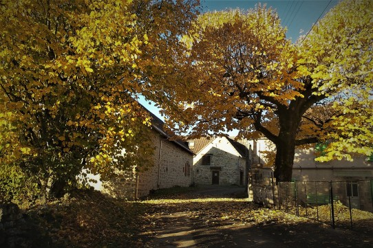 Limousin hamlet in autumn