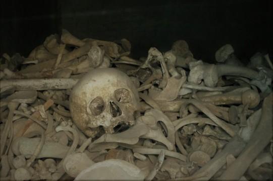 z verdun dead 1 (2)